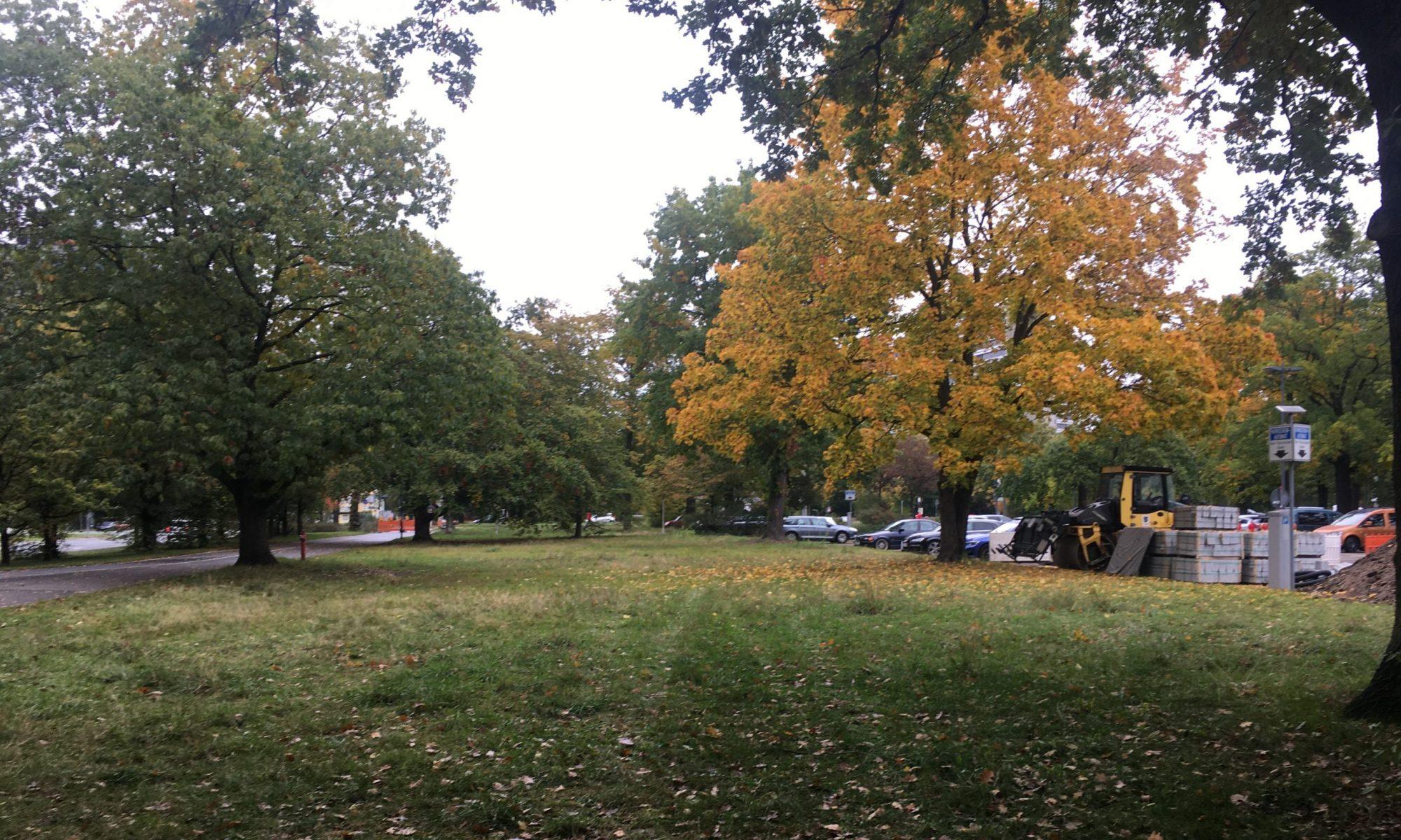84 Bäume im Luitpoldhain fällen für die Neue Konzerthalle?